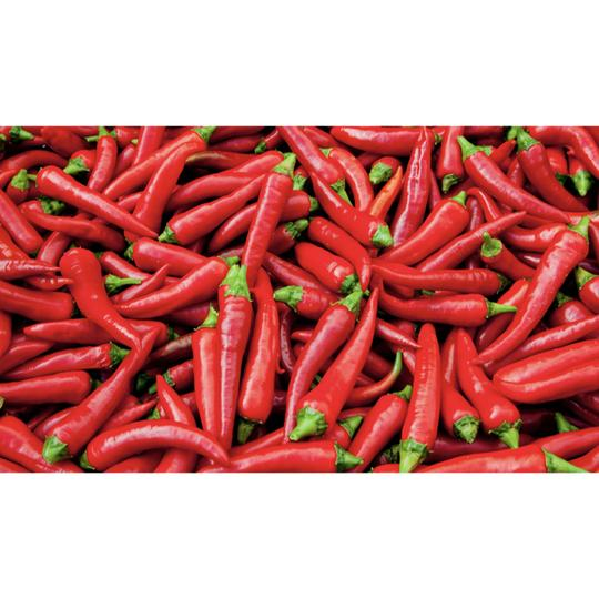 Seed Co-Operative Chilli 'De Cayenne'. 20 Seeds. Biodynamic and Demeter certified