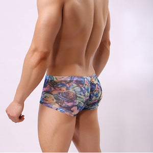 The Raymond - Transparent Mens Rainbow Boxers
