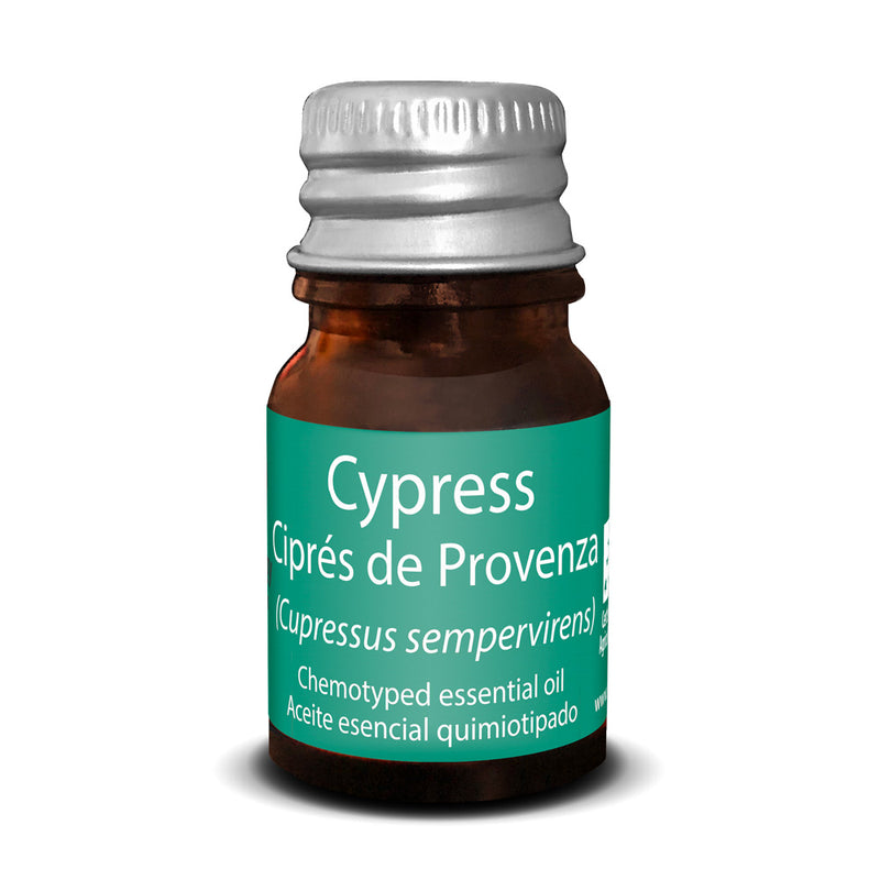 Provence Cypress Essential Oil - Touch of Synergy