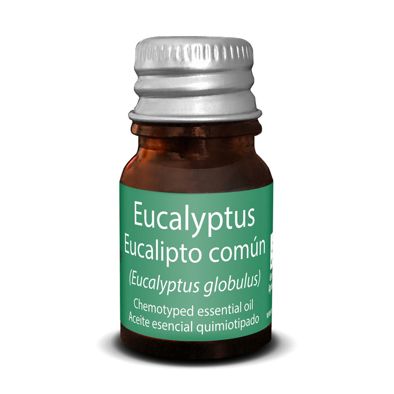 Common Eucalyptus Essential Oil - Touch of Synergy