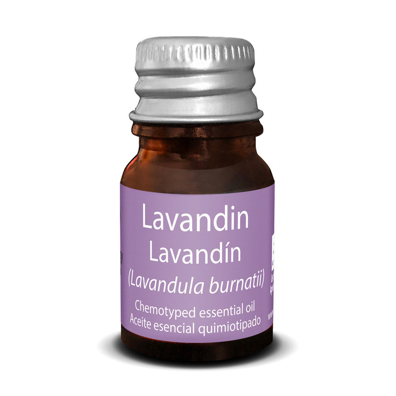 Essential Oil of Lavandín - Touch of Synergy