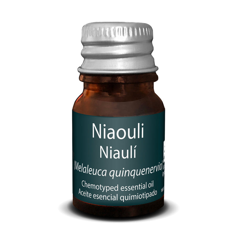 Niauoli Essential Oil - Touch of Synergy