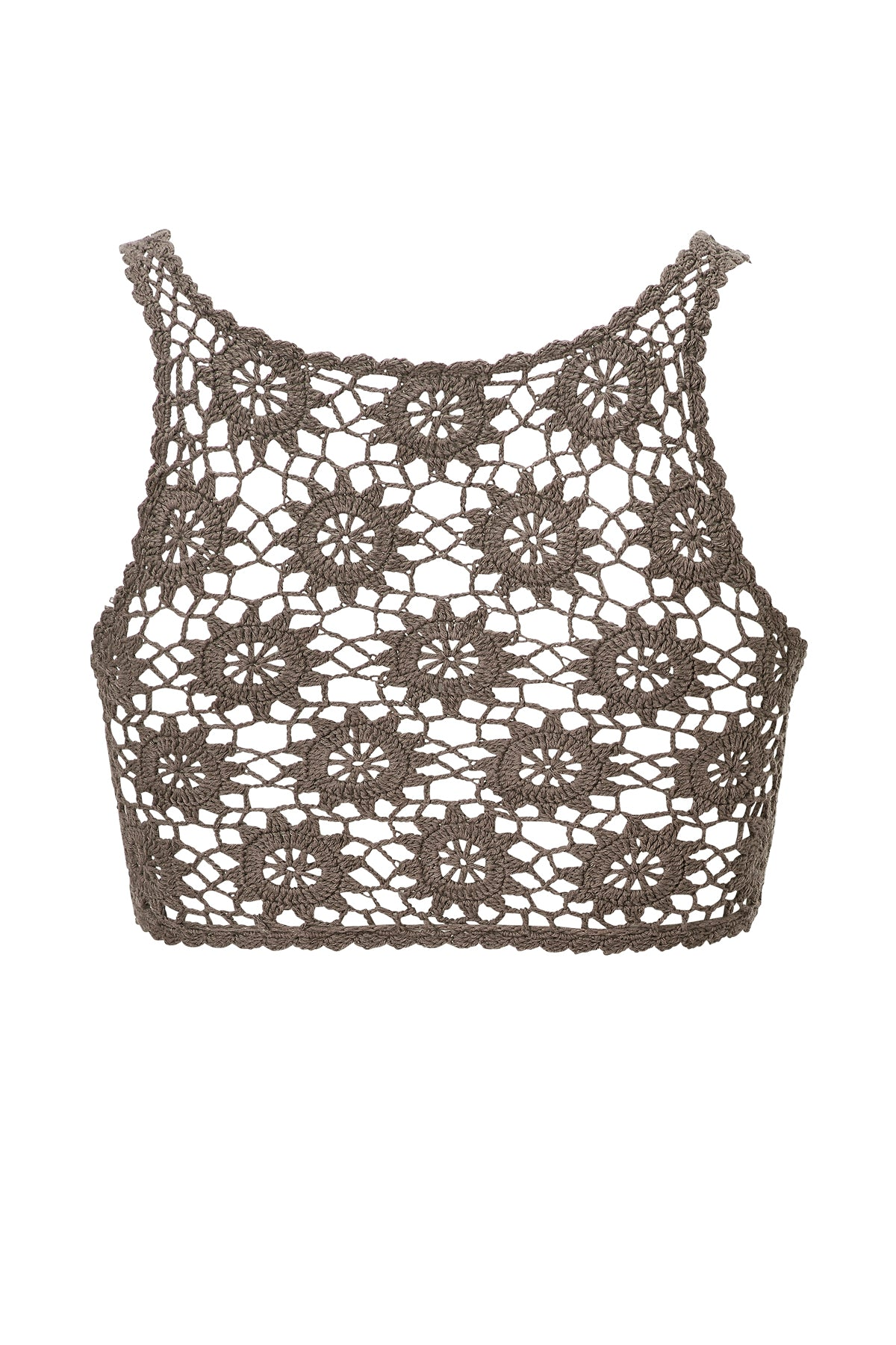 Dreamweaver Top