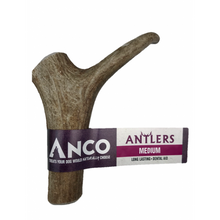 Load image into Gallery viewer, Anco Deer Antler Chew