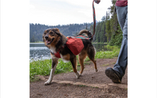 Load image into Gallery viewer, Ruffwear Front Range™ Day Pack