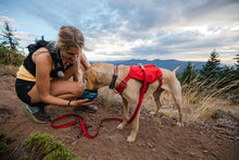 Load image into Gallery viewer, Ruffwear Switchbak™ Harness