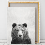 bear canvas art print artworld south africa