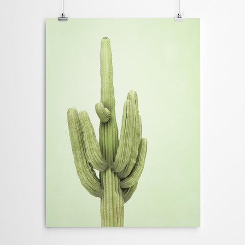 Botanical Wall Art Print