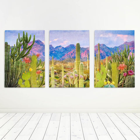 Cactus Print Set Of 3 Canvas