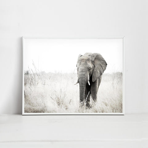A earthy tone art print of an elephant