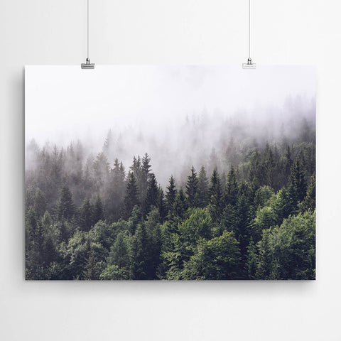 Misty Forest Art Canvas Print