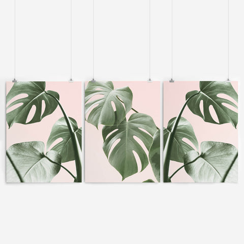 Tropical Monstera Art Set