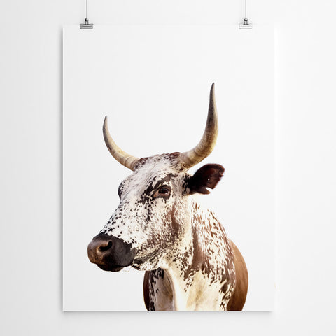 Nguni Cow Wall Art
