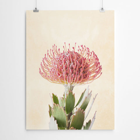 Pin Cushion Wall Art Print
