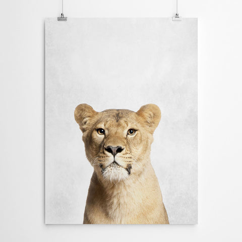 Safari Wall Art Print