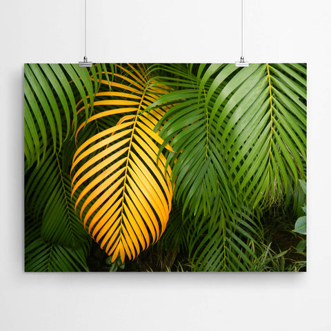 Tropical Green Palm Leaves Art
