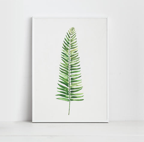 Watercolour Botanical Fern Art