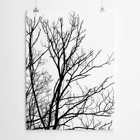 black-and-white-canvas-print