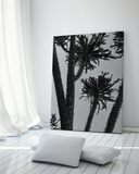 black-and-white-gallery-wall-art