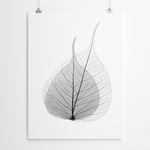 black-and-white-leaf-art-canvas-printing