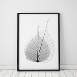 black-and-white-leaf-skeleton-art-print
