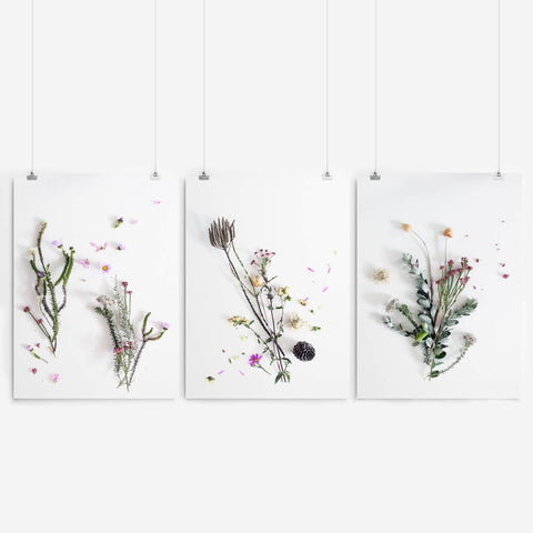 botanical wall art set