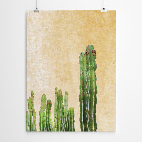 Cactus Botanical Wall Art Print