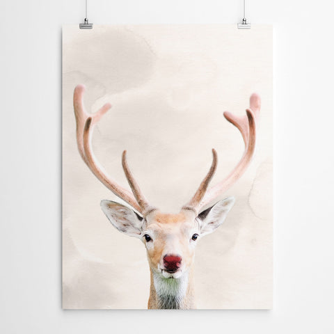 Rudolph The Red Nosed Reindeer Xmas Decor