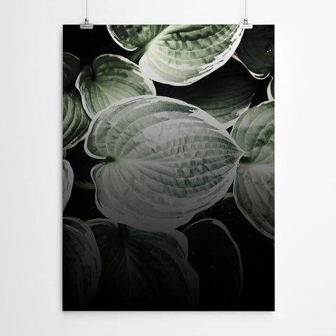 Tropical Leaves Wall Art Canvas Prints