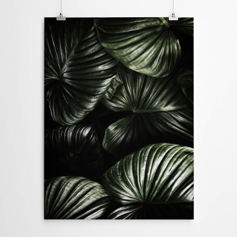 Dark Green Tropical Leaves Wall Art