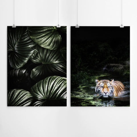 Jungle Tiger Wall Art Prints