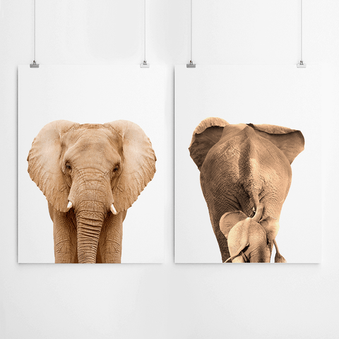elephant-wall-art-print