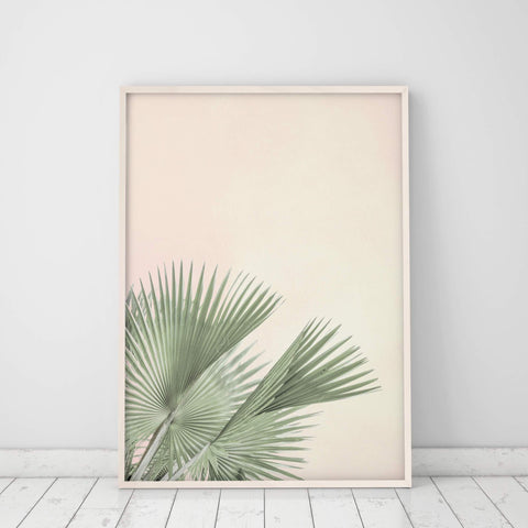 fan palm leaf print