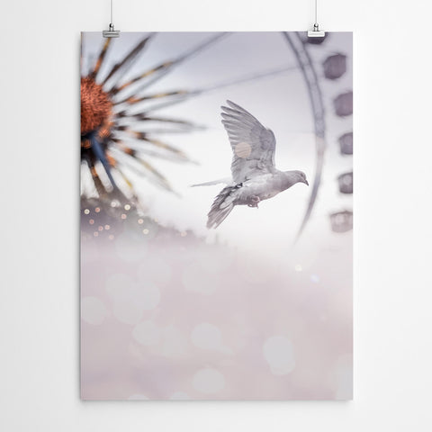 Peace Dove Ferris Wheel Art Print
