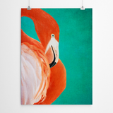 flamingo canvas print cape town johannesburg