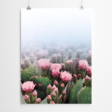 Floral Cactus Botanical Photography Wall Art