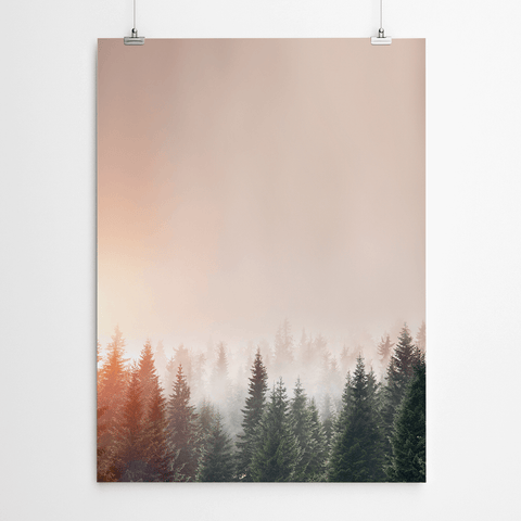 forest-canvas-print