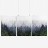 Forest Wall Art Set