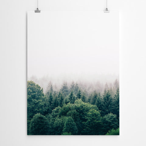 Forest Art Prints