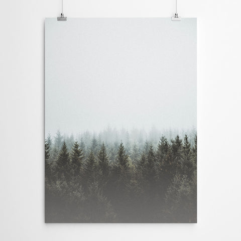 Forest Wall Art Prints