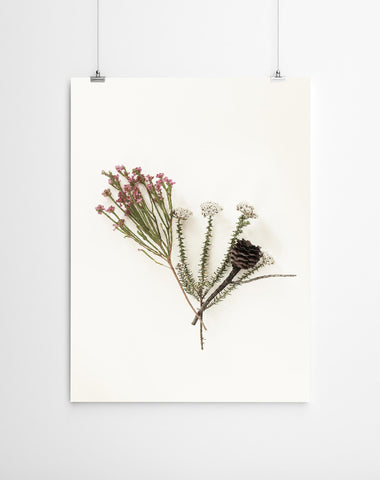 Floral fynbos wall art