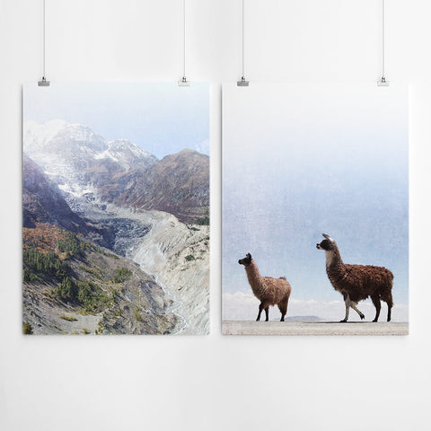 Mountain Llama Wall Art Decor