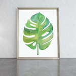 monstera-leaf