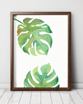 monstera-print-art-world-south-africa