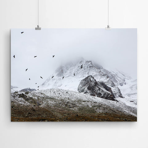 Mountain Birds Art Print