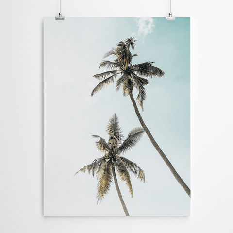 palm-canvas-print