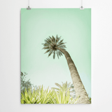 palm-tree-art-printing-cape-town