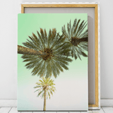 palm-tree-canvas-printing-cape-town
