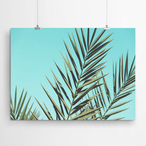 palm tree wall art prints