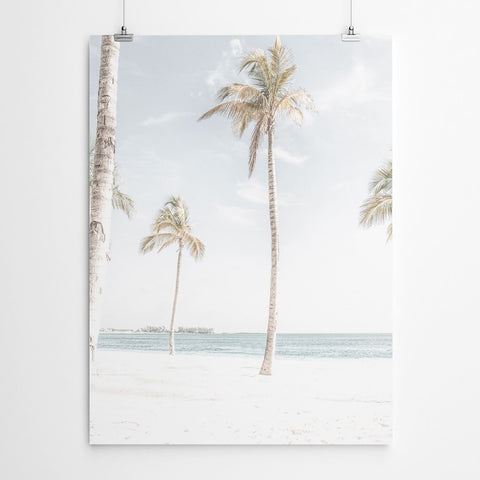 Palm Tree Tropical Beach Print